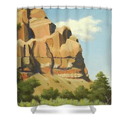 A Face In New Mexico Shower Curtain