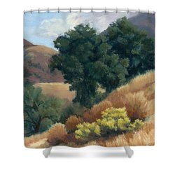 A Fall Day At Whitney Canyon Shower Curtain