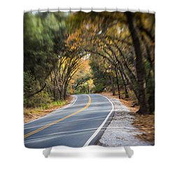 A Fall Roadway Shower Curtain