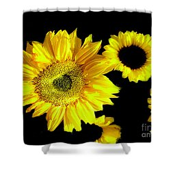 Shower Curtain featuring the photograph A Few Sunflowers by Merton Allen