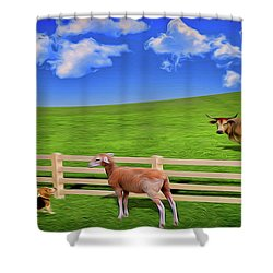 A Field Shower Curtain
