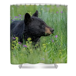 Shower Curtain featuring the photograph A Field Of Dreams by Yeates Photography