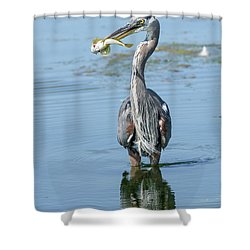 A Fine Breakfast Shower Curtain
