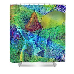 A Fish Kissing A Nose Shower Curtain by Kathie Chicoine