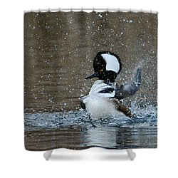 Shower Curtain featuring the photograph A Flurry Of Feathers by Fraida Gutovich