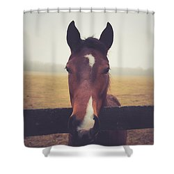 Shower Curtain featuring the photograph A Foggy Christmas Day by Shane Holsclaw