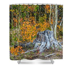 A Forest Of Color Shower Curtain