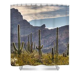 A Forest Of Saguaro Cacti Shower Curtain by Vivian Christopher