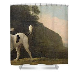 A Foxhound Shower Curtain by George Stubbs