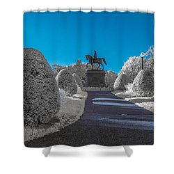 A Frosted Boston Public Garden Shower Curtain