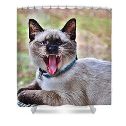 A Full Yawn Shower Curtain