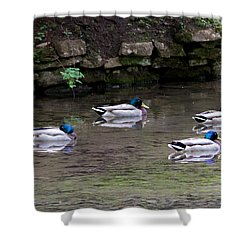 A Gathering Of Men Shower Curtain