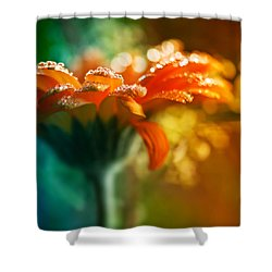 A Gift From God Shower Curtain