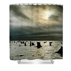 A Glimer Of Light Shower Curtain