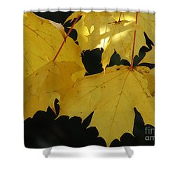 A Glimpse Of Light Shower Curtain