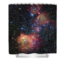 Shower Curtain featuring the photograph A Glowing Gas Cloud In The Large Magellanic Cloud by Eso
