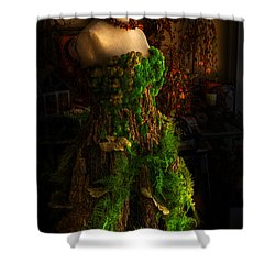 A Gown For A Faerie Princess Shower Curtain