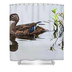 A Graceful Swim Shower Curtain