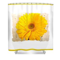 A Grand Yellow Gerber Shower Curtain by Marsha Heiken