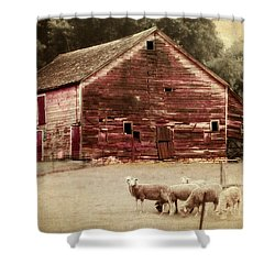 A Grazy Day Shower Curtain by Julie Hamilton