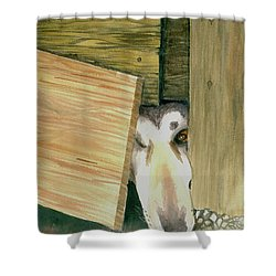 Shower Curtain featuring the painting A Great Escape  -variation 2 by Yoshiko Mishina