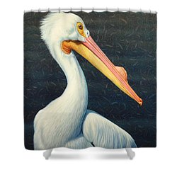 A Great White American Pelican Shower Curtain