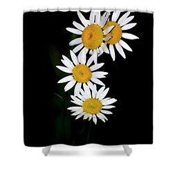 Shower Curtain featuring the digital art A Group Of Wild Daisies by Chris Flees