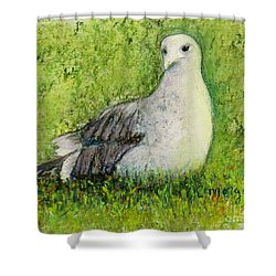 A Gull On The Grass Shower Curtain
