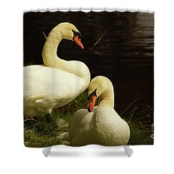 A Handsome Pair Shower Curtain