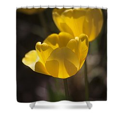 A Happy Spring Moment Shower Curtain