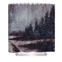 A Hazy Shade Of Winter  Shower Curtain