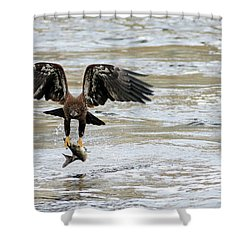 A Heavy Meal Shower Curtain by Brook Burling