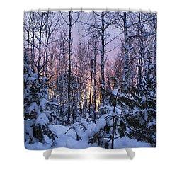 A Hidden Trail Shower Curtain