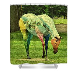 A Horse Is A Horse Shower Curtain