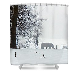 A Horse Of A Different Color Shower Curtain