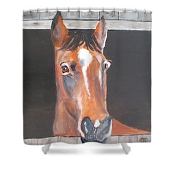 A Horse With No Name Shower Curtain by Carole Robins
