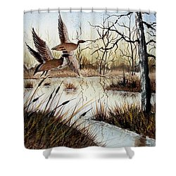 A 'jerry Yarnell' Study Shower Curtain
