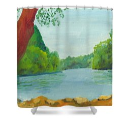 A June Day At Hidden Falls Shower Curtain