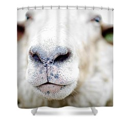 A Kiss Shower Curtain by Swift Family