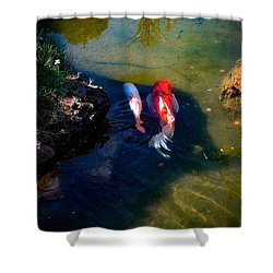 A Koi Romance Shower Curtain