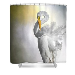 A Lady Needs Her Privacy Shower Curtain