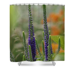Shower Curtain featuring the photograph A Lancaster Garden by Greg Graham