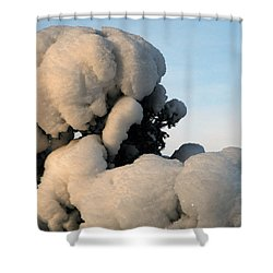 Shower Curtain featuring the photograph A Lick Of Snow On The Bush by Paul SEQUENCE Ferguson             sequence dot net