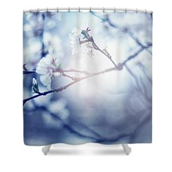 A Light Exists In Spring Shower Curtain