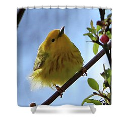 A Liitle Yellow Puff Ball Shower Curtain by Marle Nopardi