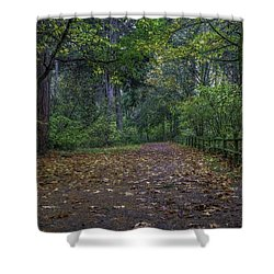 A Lincoln Park Autumn Shower Curtain by Ken Stanback