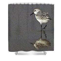 A Little Bird On A Beach Shower Curtain by Alex Galkin