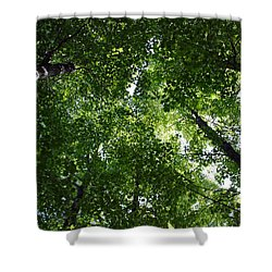 Shower Curtain featuring the photograph A Little Bit Of Heaven by Joanne Coyle