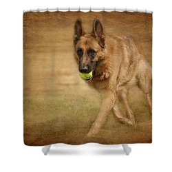 Shower Curtain featuring the photograph A Little Playtime - German Shepherd Dog by Angie Tirado