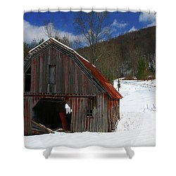 A Little Rust Shower Curtain by Dale R Carlson